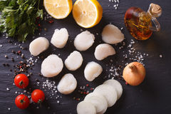Raw scallops and vegetables for cooking close-up. Horizontal top. Raw scallops and vegetables for cooking on a table close-up. Horizontal top view Stock Images