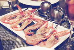 Raw scampi dish on restaurant table, toned image. Raw scampi dish on restaurant table - tasty seafood, toned photo Royalty Free Stock Image