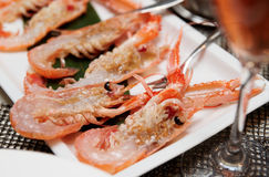 Raw scampi on restaurant table. Raw scampi dish on restaurant table, close-up Royalty Free Stock Images