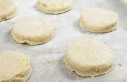 Raw scones on a baking sheet Stock Photography