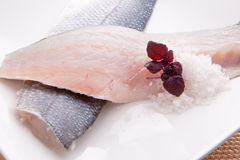 Raw sea bass. Two slices of sea bass with salt and herbs Royalty Free Stock Photos