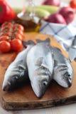Raw sea bass Royalty Free Stock Image