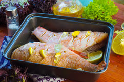 Raw sea bass in a baking. Raw sea bass in a pan ready for baking Royalty Free Stock Images