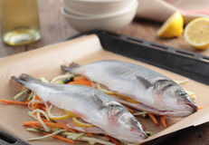 Raw sea bass on a baking sheet Royalty Free Stock Photos