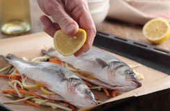 Raw sea bass on a baking sheet Stock Photography