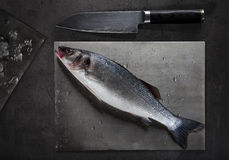 Raw sea bass on cutting board. Silver raw sea bass on cutting board with ice and knife Royalty Free Stock Photo