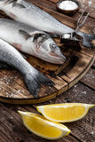 Raw sea bass fish. Fresh raw sea bass fish on wooden cutting board cooking concept on a dark wooden background Royalty Free Stock Image