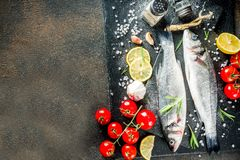 Raw sea bass fish with spices. And ingredients, ready for cooking, dark concrete background copy space royalty free stock image
