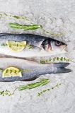Raw sea bass on ice with rosemary, thyme and lemon. Gray background, top view. royalty free stock photo