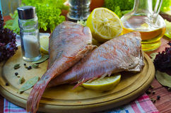 Raw sea bass. Ready for healthy cooking Stock Photography