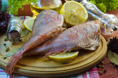 Raw sea bass. Ready for healthy cooking Royalty Free Stock Image