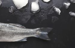 Fresh sea bass on black background. Raw sea bass tail and ice cubes at black background. Minimalistic mokeup for seafood restaurant or fish market. Top view stock image
