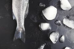Fresh sea bass on black background. Raw sea bass tail and ice cubes at black background. Minimalistic mokeup for seafood restaurant or fish market. Top view stock images