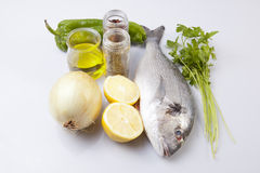 Raw sea bream fish with some ingredients Royalty Free Stock Photography