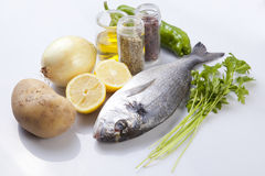 Raw sea bream fish with some ingredients. Over white background Royalty Free Stock Photography