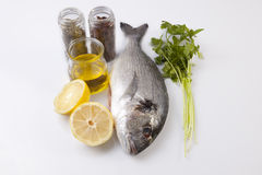 Raw sea bream fish with some ingredients. Over white background Royalty Free Stock Photos