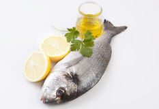 Raw sea bream fish with some ingredients. Over white background Royalty Free Stock Image
