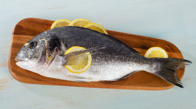 Raw sea bream with lemon on  wooden cutting board. Top view Royalty Free Stock Images