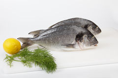 Raw sea breams with lemon and dill royalty free stock image