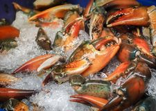 Raw sea crab claws on ice for sale, Food image. Raw sea crab claws on ice for sale in seafood market. Thailand Stock Photo