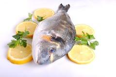 Free Raw Sea Fish Royalty Free Stock Photo - 26598435