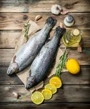 Raw sea fish salmon on old paper with lemon slices and fragrant rosemary royalty free stock photos