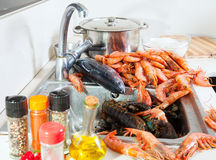 Raw sea foods  at sink in  kitchen Royalty Free Stock Images
