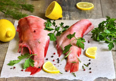 Raw sea perch. Stock Image