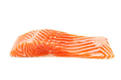 Raw sea trout fillet Stock Photography
