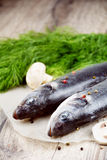Raw seabass fish on the wooden board Stock Photos