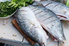 Raw seabass with herbs Royalty Free Stock Image
