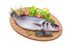Raw seabass Royalty Free Stock Images
