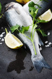 Raw seabass with salt, lemon and parsley Royalty Free Stock Images
