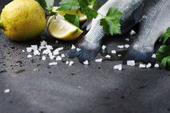 Raw seabass with salt, lemon and parsley Royalty Free Stock Photography
