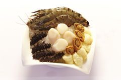Raw Seafood in bowl. Raw Sea Cucumber ,scallop,abalone and prawn on ice in a bowl Stock Photo