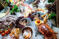 Raw seafood Royalty Free Stock Images