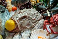 Raw seafood Stock Image
