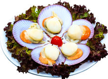 Raw Seafood. The Isolation raw seafood ingredient in the decorated container stock images