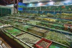 Raw Seafood market. Hong Kong raw Seafood market royalty free stock photos