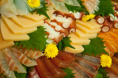 Raw Seafood Sashimi Royalty Free Stock Image