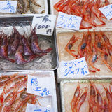 Raw seafood selling on market in Japan Stock Image