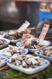 Raw seafood selling on market in Japan Stock Images