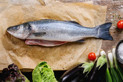 Raw seebass fish. Raw uncooked seebass fish on baking paper with sea salt, dry herbs and vegetables over old wooden background. Top view Royalty Free Stock Photos