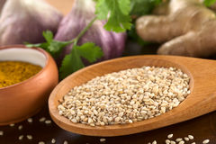Raw Sesame Seeds Royalty Free Stock Image