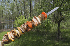 Raw shashlik on a skewer Stock Photo