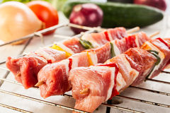 Raw shashlik and vegetables Stock Photography