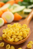 Raw Shell Pasta Stock Photography