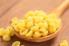 Raw Shell Pasta Royalty Free Stock Photo