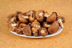 Raw Shiitake mushrooms. Stock Image