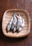 Raw shishamo fish Royalty Free Stock Photography